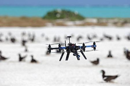 Wildlife Tracking with drones.